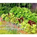 Help Urban Eatin' Win $25,000 to Create More Edible Landscapes