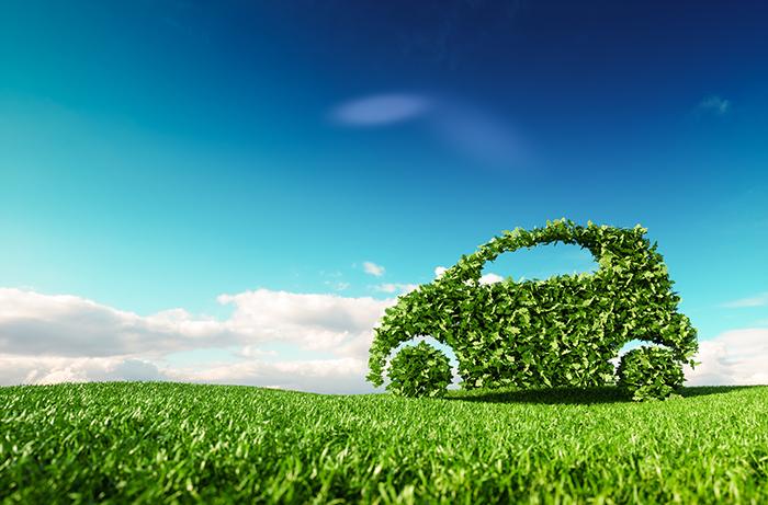 Greener forms of transportation: Celebrating carbon-neutral success