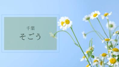 そごう千葉 ATELIER CHIHIRO イベント