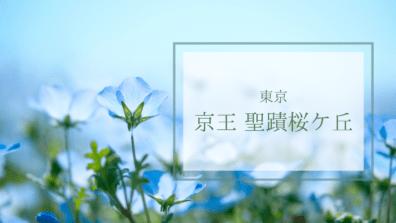 リバティプリント ポーチ 京王聖蹟桜ケ丘