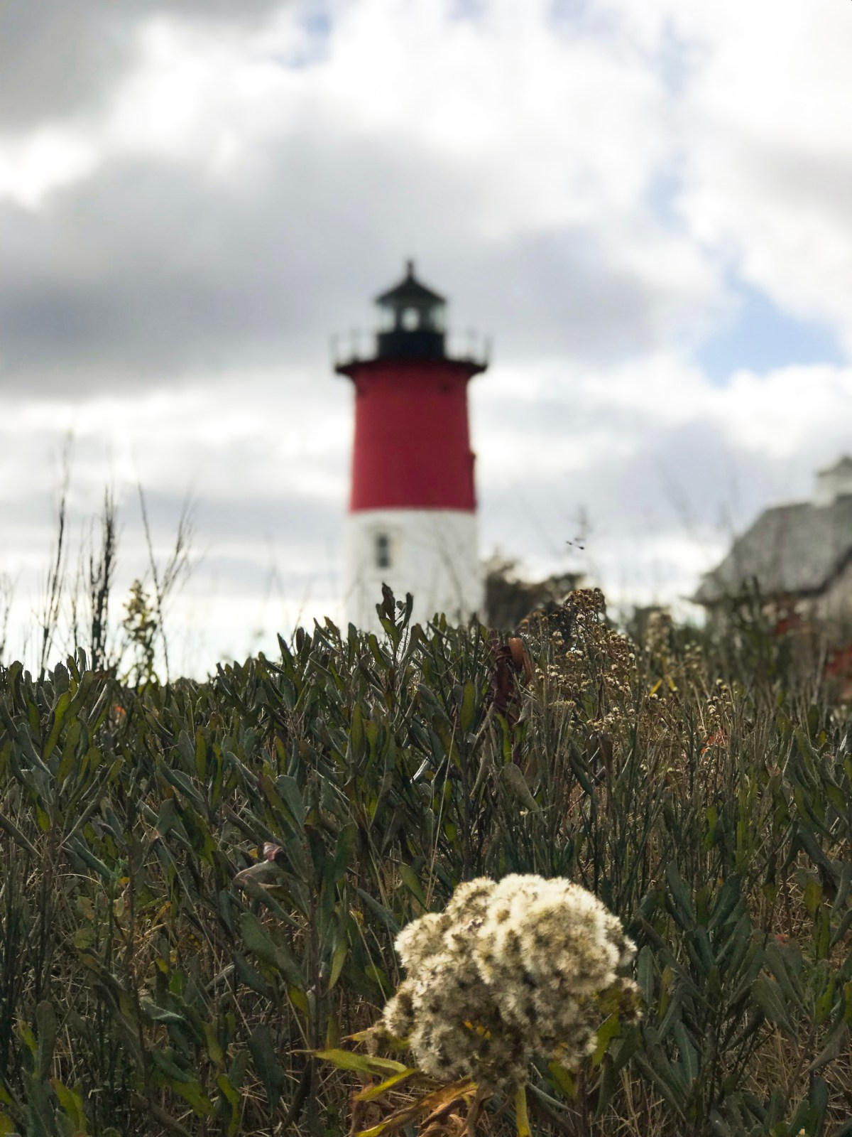 lighthouse_capecod