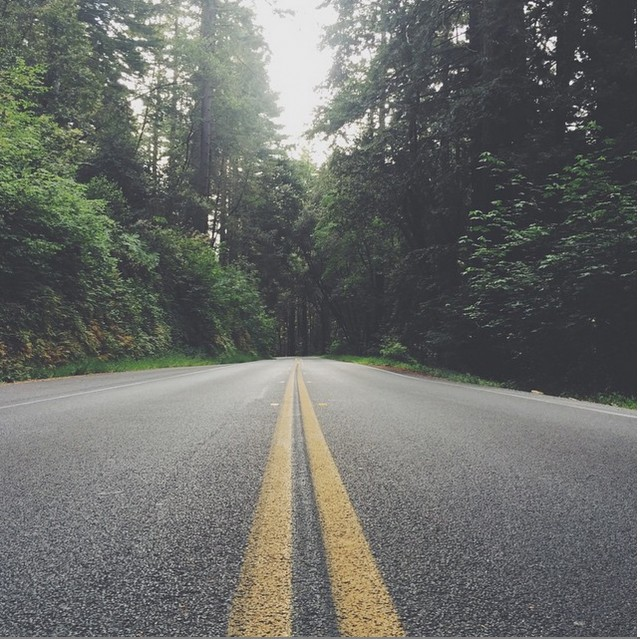 low view of a road in northern california
