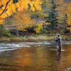 Tips for an Epic Fall Fly Fishing Experience