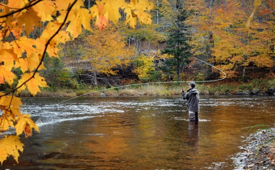 Fall Fly Fishing Trip