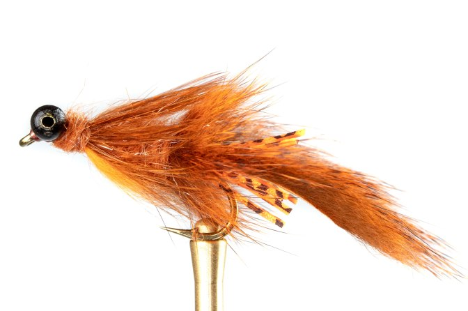 Learn to tie the Curry Craw fly tying instructions