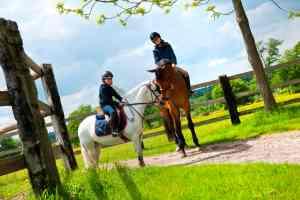 Equitation - Activités à Rouen