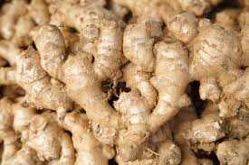 Ginger-roots