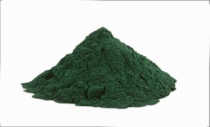 The advanced of Moringa-Spirulina tablets