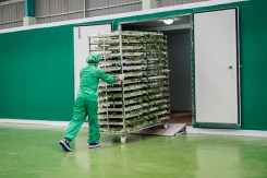 High-standard-Hygienic-Food-grade-trolleys-high-capacity-drying-automatic