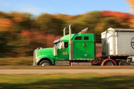 trucker back support