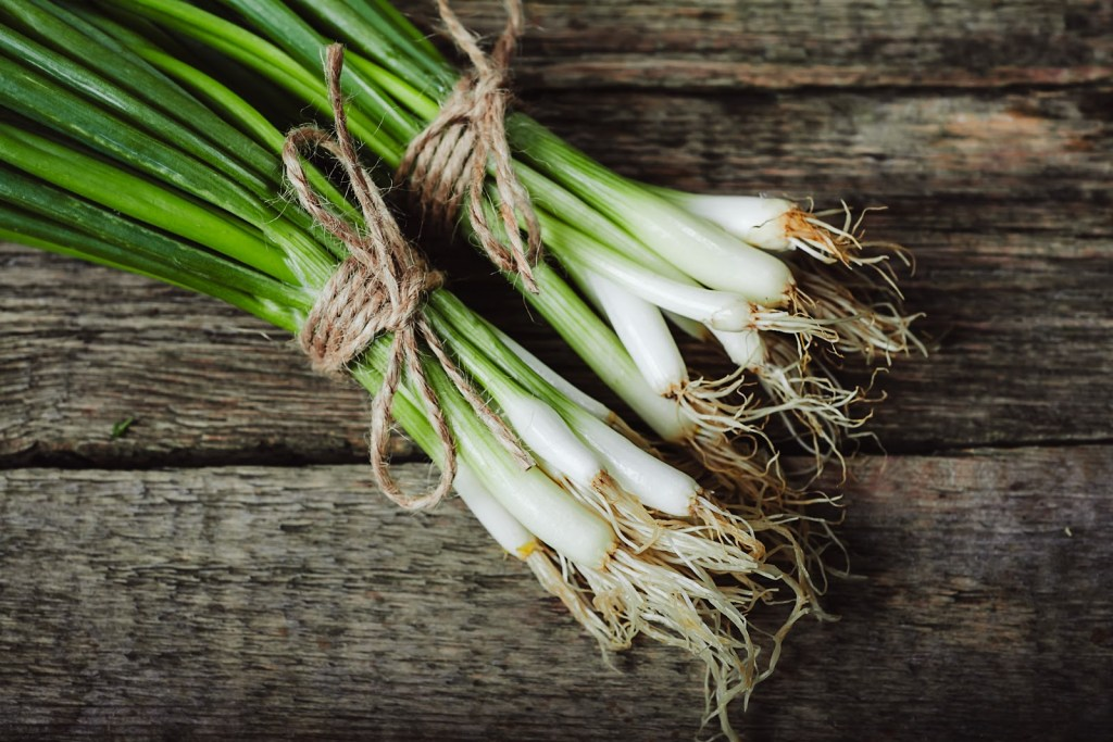 Spring onion on wooden background