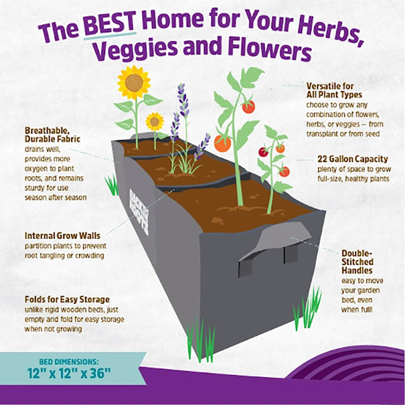 Back to the Roots raised garden bed size dimensions