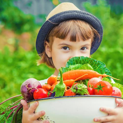 how to start a vegetable garden: Little girl holding a bowl of fresh vegetables