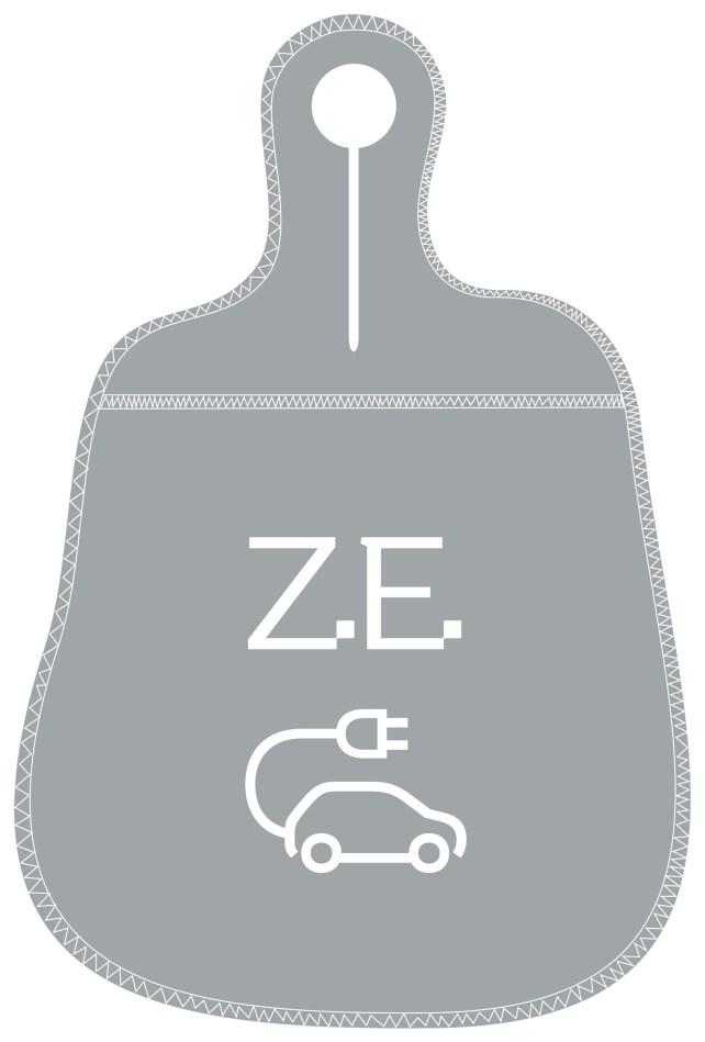 Bagoto Renault ZE