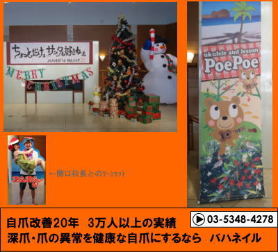 PoePoeメレカリキマカ'14 続・日本ハワイ化計画!に参加してきました