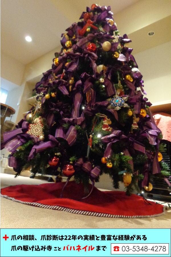 バハネイルのクリスマス☆★