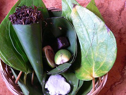 image of betel nut chew preparation