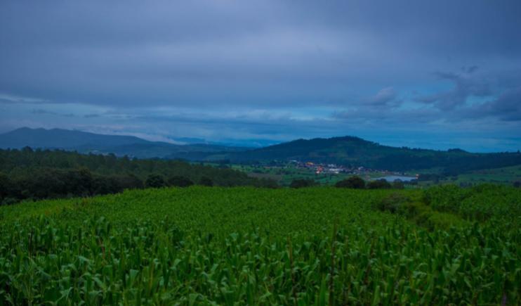 The beautiful landscape of Nanacamilpa- A firefly experience
