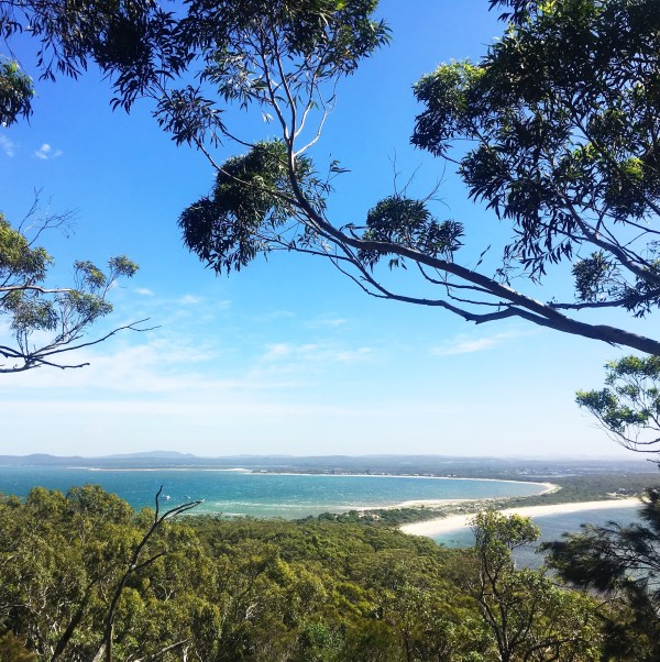 View of a white sand beach in Australia, gum trees in foreground