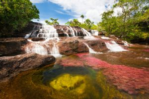 Rulebook for Caño Cristales: The World's Most Beautiful River