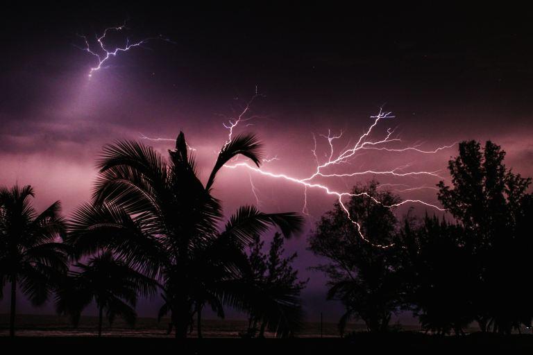 Lightning flashing across a dark sky behind tropical trees in hurricane season