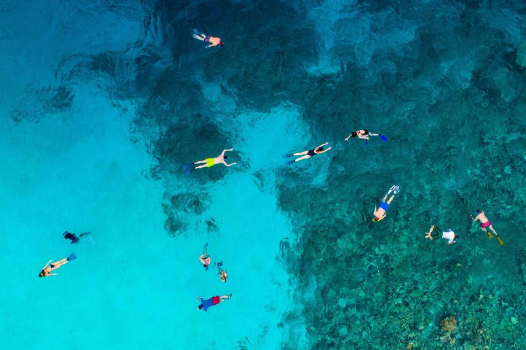 A group of People snorkeling in the Maldives