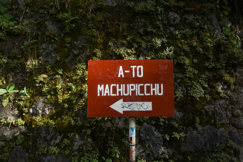 The Machu Picchu Jungle Trek
