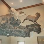Mountain Sheep Scene