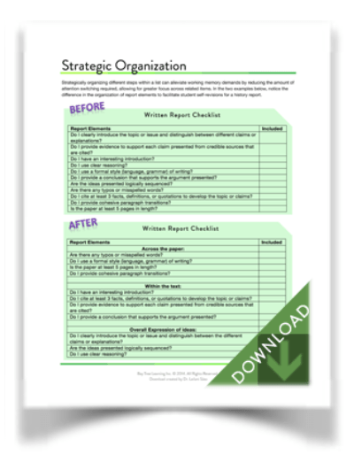 "Download ""Strategic Organization"" (from BayTreeBlog.com)"