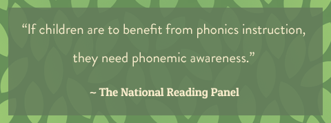 """If children are to benefit from phonics instruction, they need phonemic awareness."" (BayTreeBlog.com)"