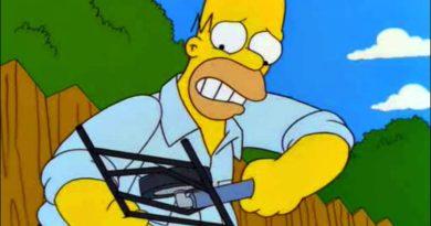 Homer principiante