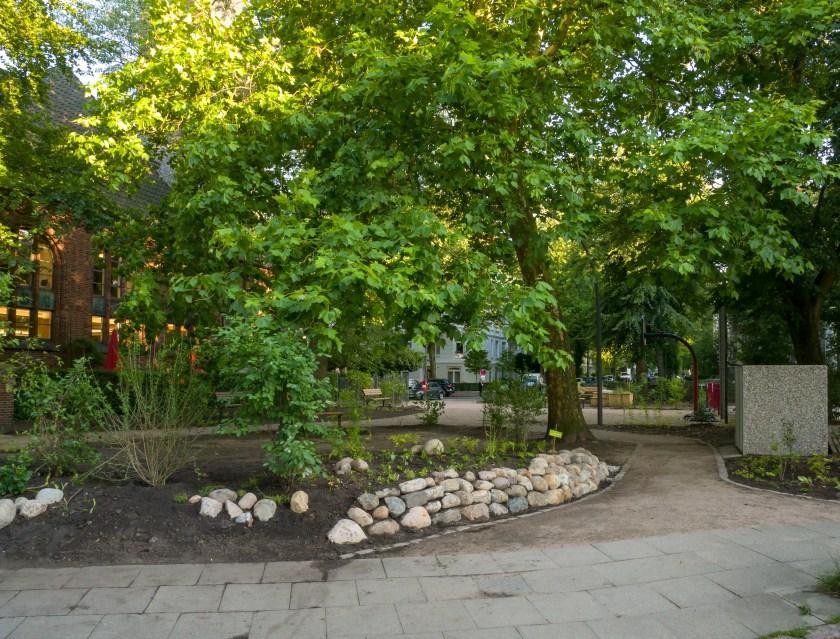 Der von der Gärtnerei Biotop gebaute Friesenwall (aufgebaute hellgraue Findlinge, noch wenig bewachsen)