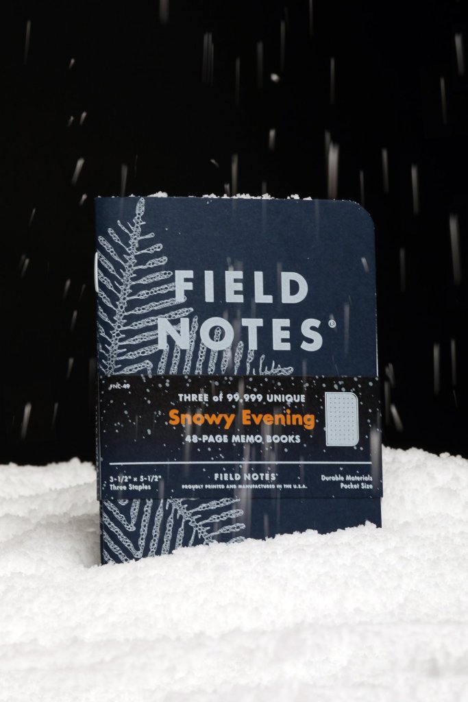 Field Notes Snowy Evening 2020