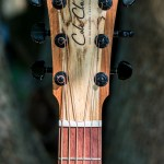 Hanne Kah custom made Cole Clark Guitar