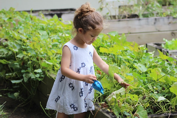 Why it is important to get your kids involved with the garden