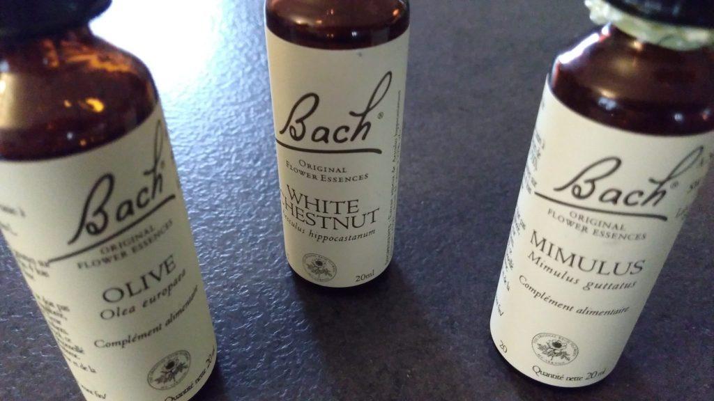mes fleurs de Bach_blog_betilami