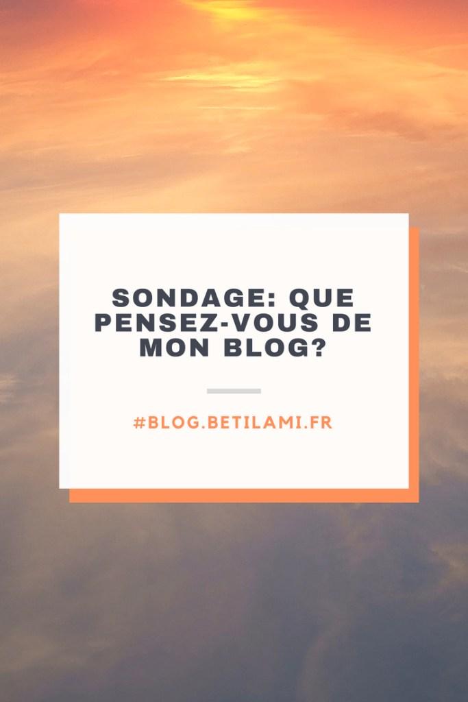 Que pensez vous de mon blog? Sondage blog.betilami.fr