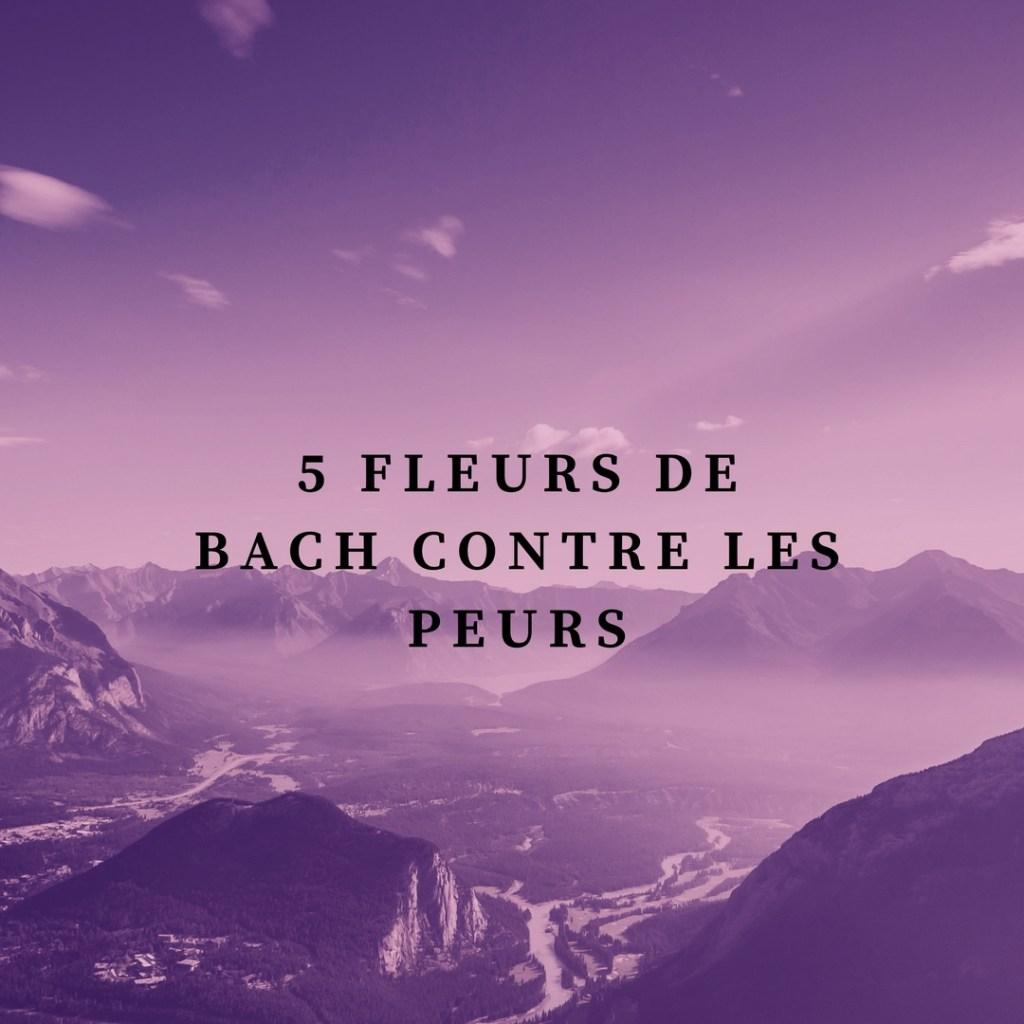 Découvrez 5 fleurs de Bach contre les peurs - Blog _Betilami