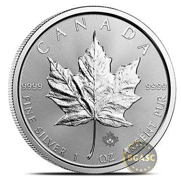 Canadian Mint one ounce silver maple leaf