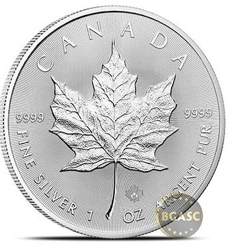 silver maple leaf bgasc