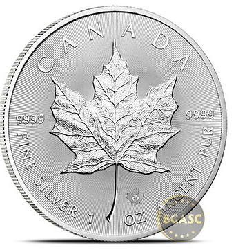 silver maple leaf bgasc