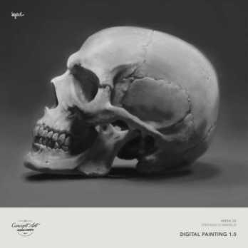 [Week02]Stefano_D'Angelo