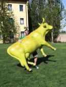io-e-mucca1