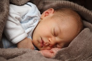 adorable-21998_640