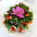 10 motivi per diventare vegetariani