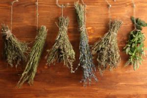 erbe essiccate