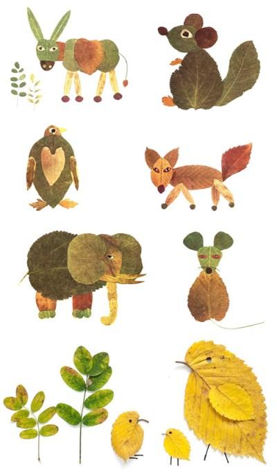 foglie secche per creare disegni