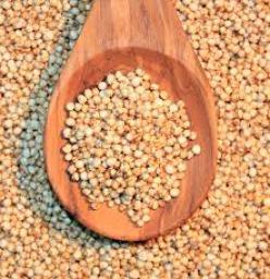 quinoa cruda