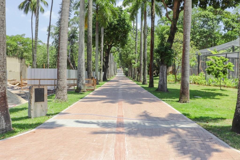 Alameda Macaco Tião no BioParque do Rio vista de frente