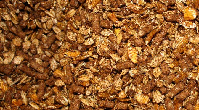 Commercially processed horse feed